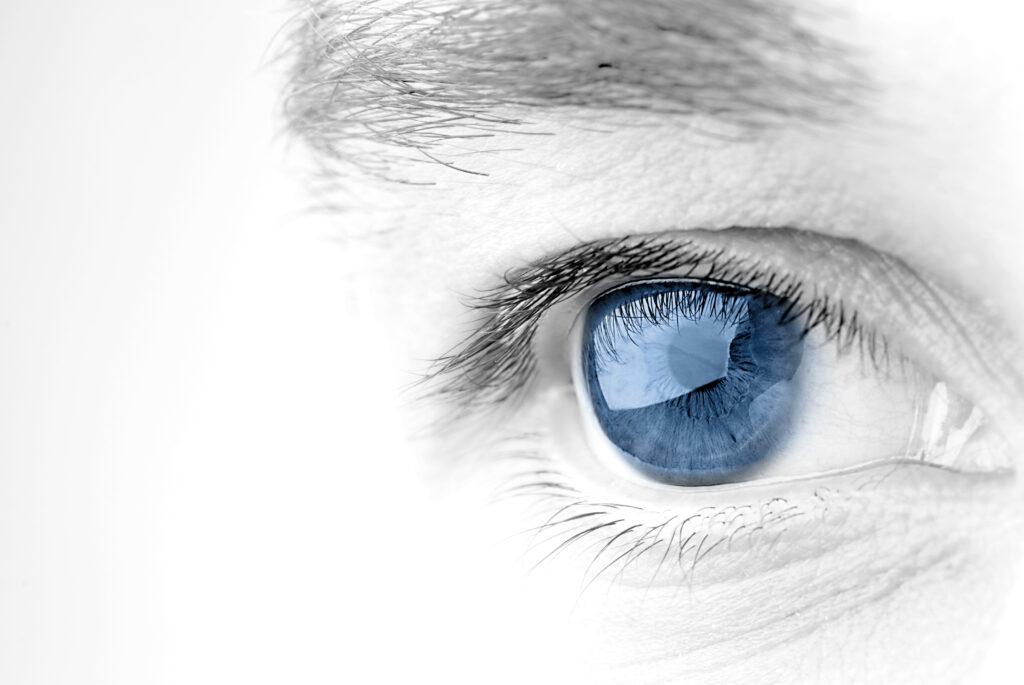 Jak przebiega proces widzenia